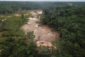 illegal mine in forest