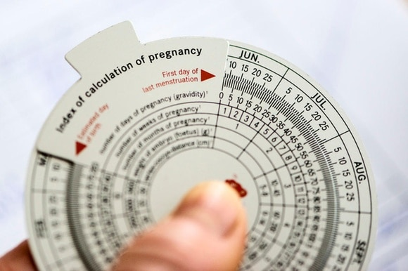 Index of calculation of pregnancy wheel.