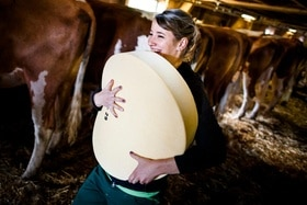 A woman carrying cheese