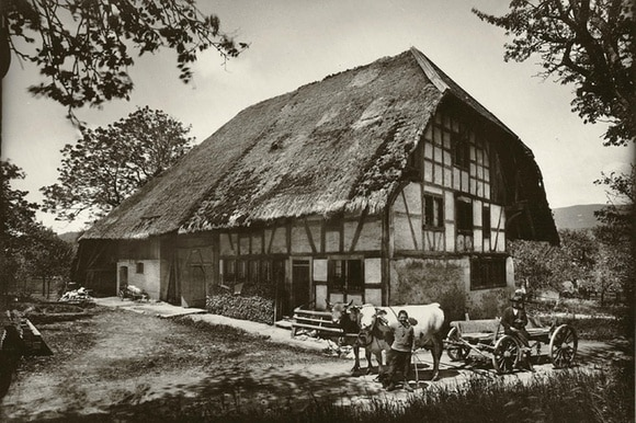 A house with a thatched roof