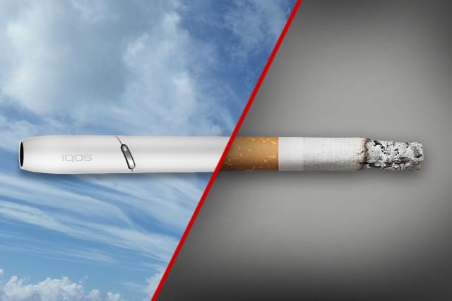 Фирмы табачных изделий мундштук для сигарет купить в туле