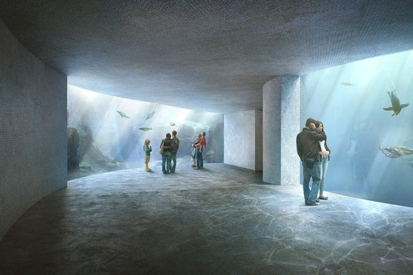 Renderings of zoo