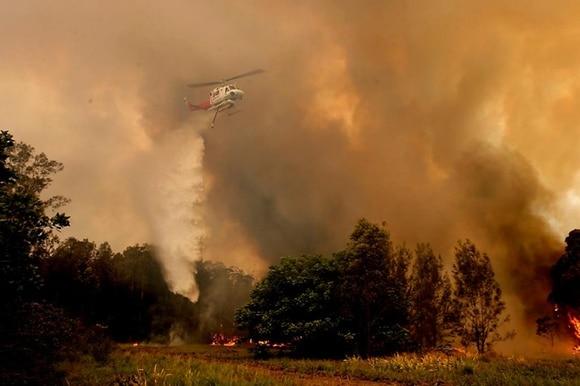 foresta in fiamme, avvolta in colonne di fumo.