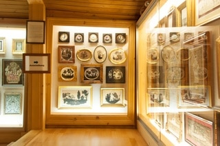 Collection display case