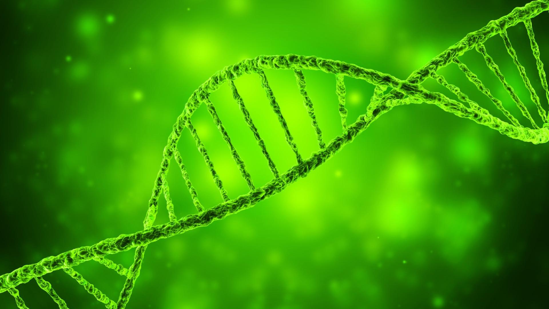 Zurich professors win European inventor prize for DNA encoding work